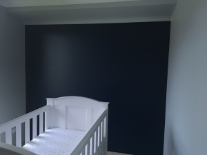 Navy Blue Feature Wall